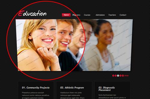 stock-education