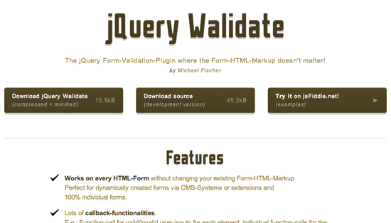 Website Screenshot von jQuery Walidation