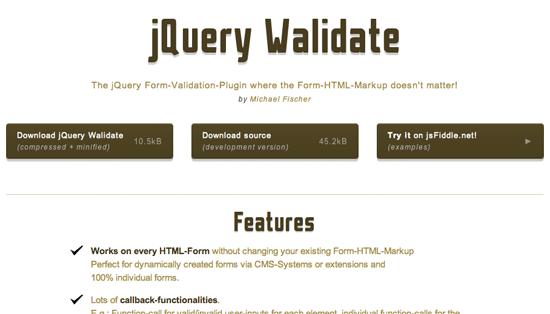 Website Screenshot von jQuery Walidation