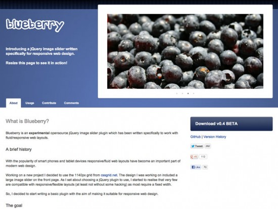 Blueberry Website