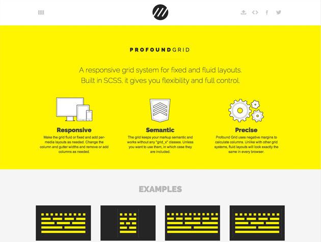 Screenshot der ProFound Grid-Website