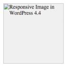 wordpress-rwd-images