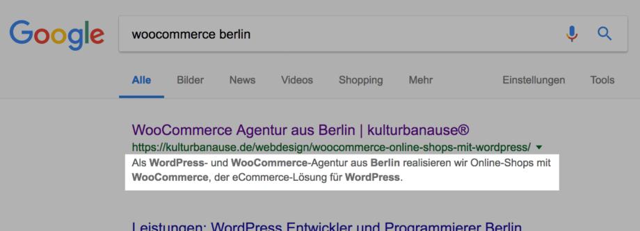 Beispiel für die Darstellung der Beschreibung bei Google