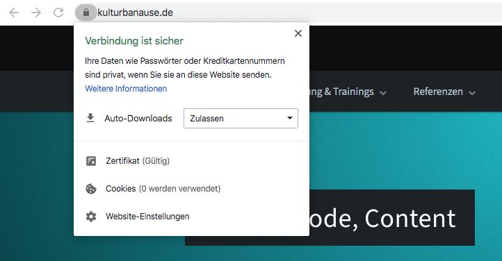 Website in Chrome mit Adresszeile und geöffneten Cookie-Infos