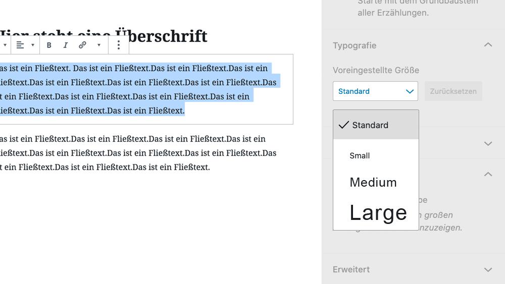 Angepasste Schriftgrößenauswahl im WordPress-Block-Editor