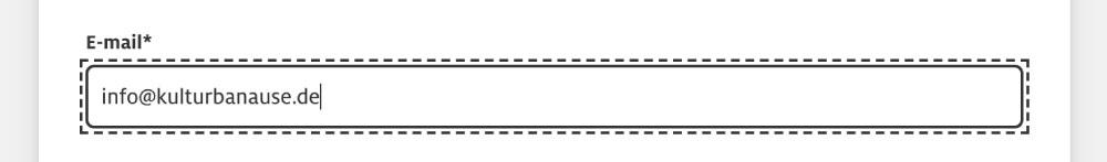 E-Mail-Input-Feld mit gestylter Tastaturfokusanzeige