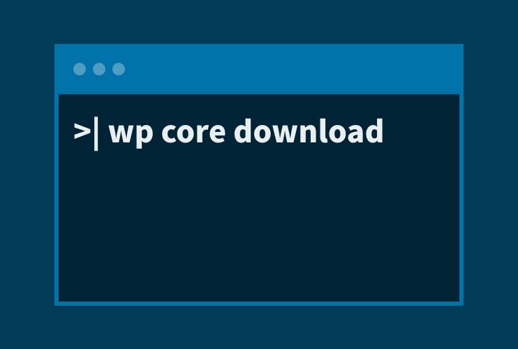 Stilisierte Kommandozeile mit WP CLI-Befehl